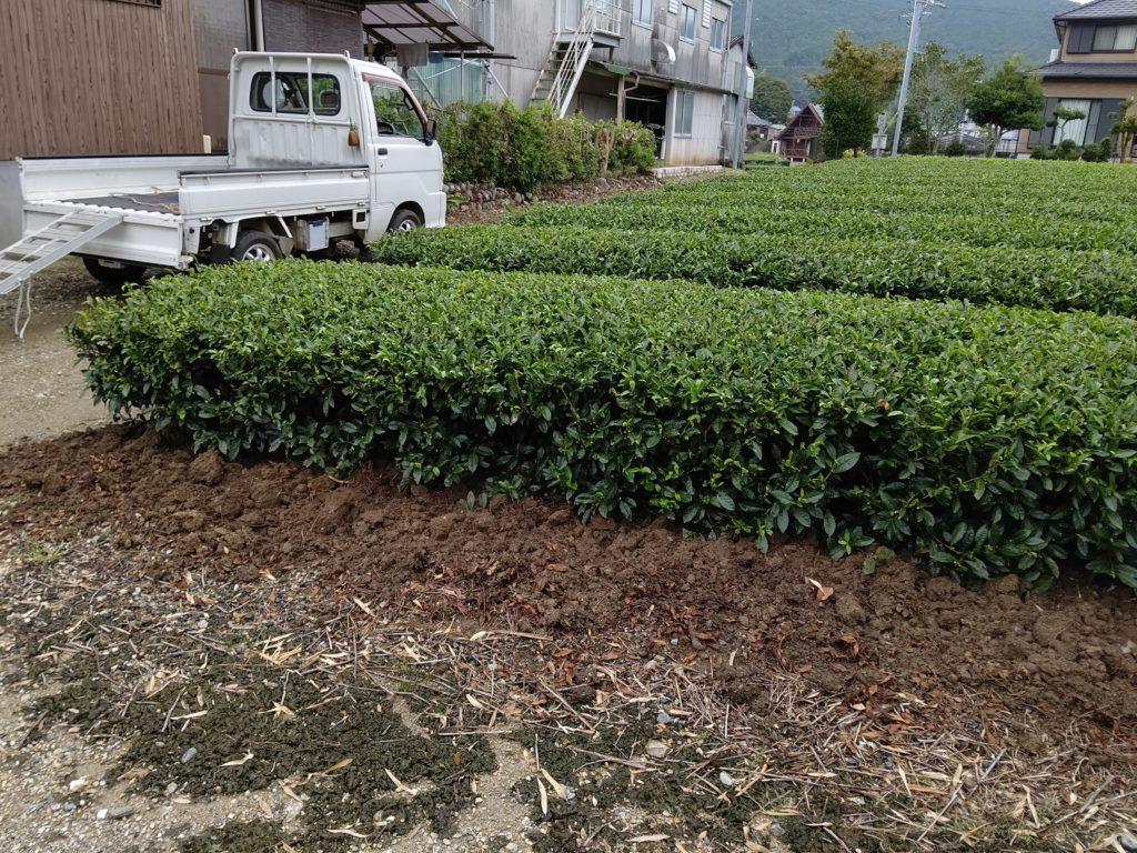 茶畑の深耕